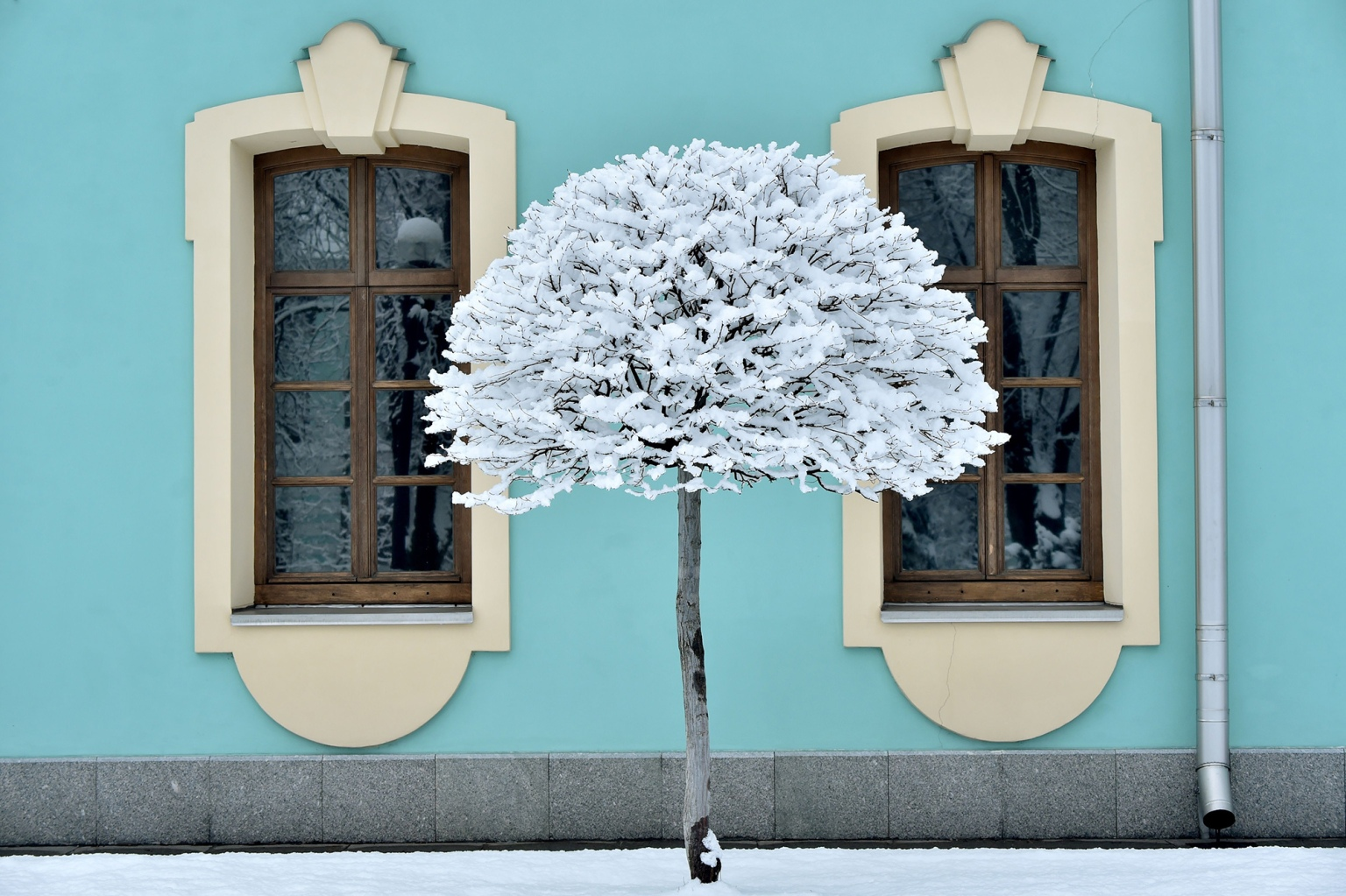 A tree after heavy snowfall in the Ukrainian capital Kiev on Feb. 6. (Sergei Supinsky/AFP/Getty Images)