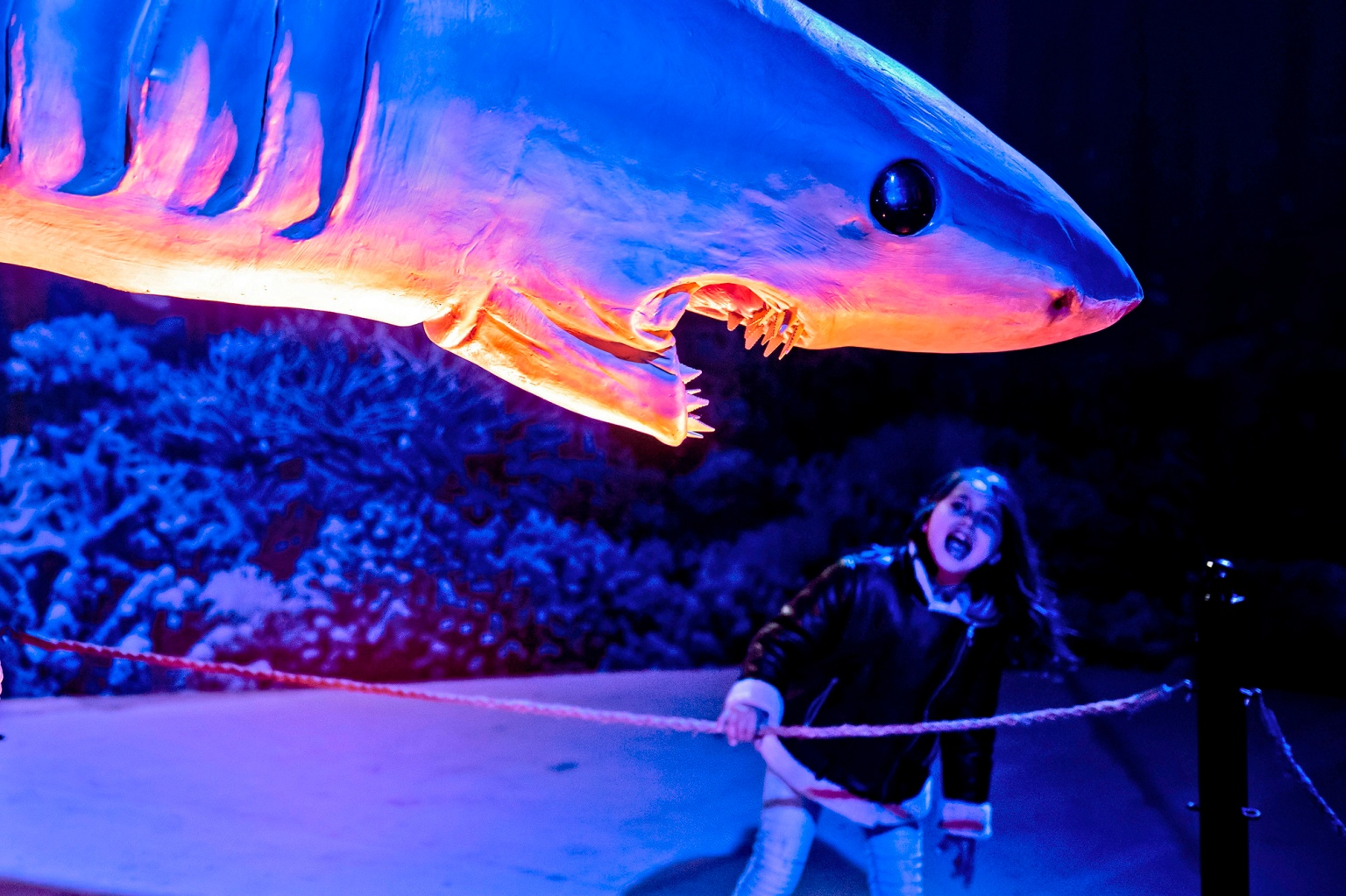 A child visits the Dinosaurs of the Ocean exhibit, an interactive display of robotic extinct creatures in real-life size, in the Cypriot capital Nicosia on Feb. 6. (Iakovos Hatzistavrou/AFP/Getty Images)