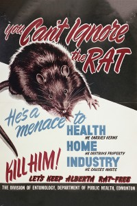 A poster released by the Alberta Department of Public Health circa 1948. (A17202b/Provincial Archives of Alberta)