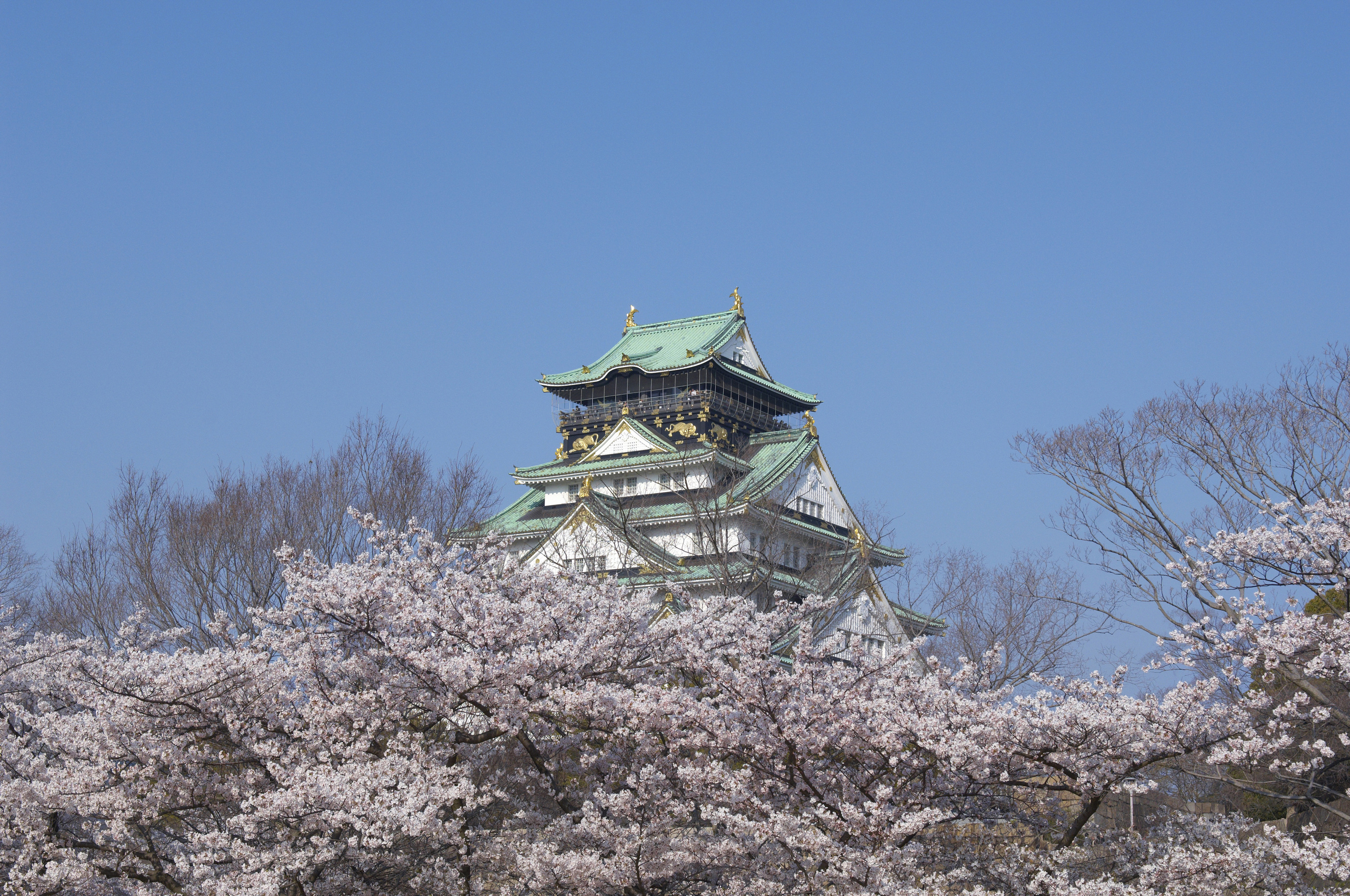 Osaka Castle is the city's premier tourist attraction and an important part of its heritage.OSAKA CONVENTION & TOURISM BUREAU