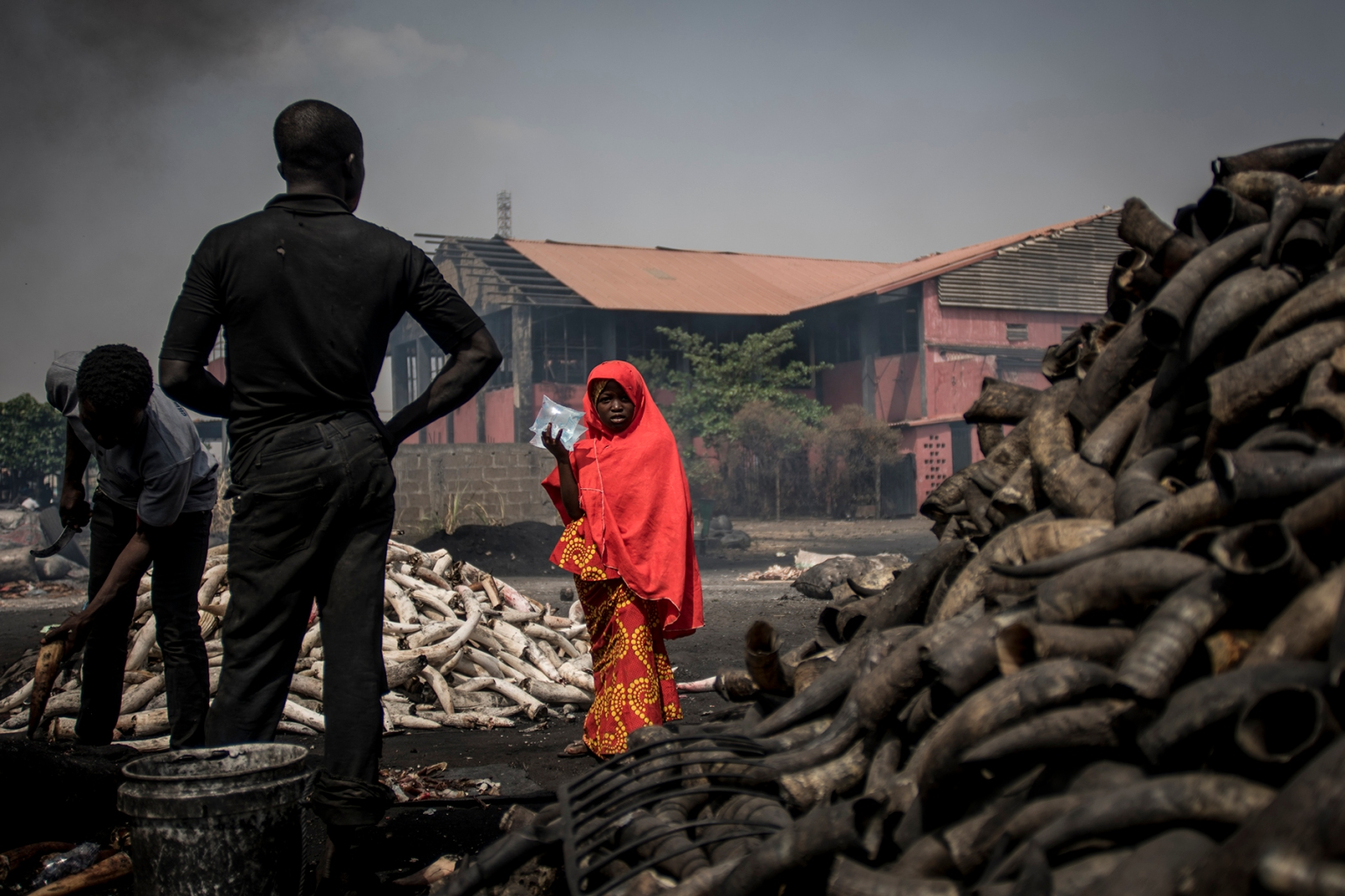A girl stands in front of cow horns at Kaduna Abatour meat market in North Kaduna on Feb. 25 as Nigeria awaited results of its presidential election. CRISTINA ALDEHUELA/AFP/Getty Images