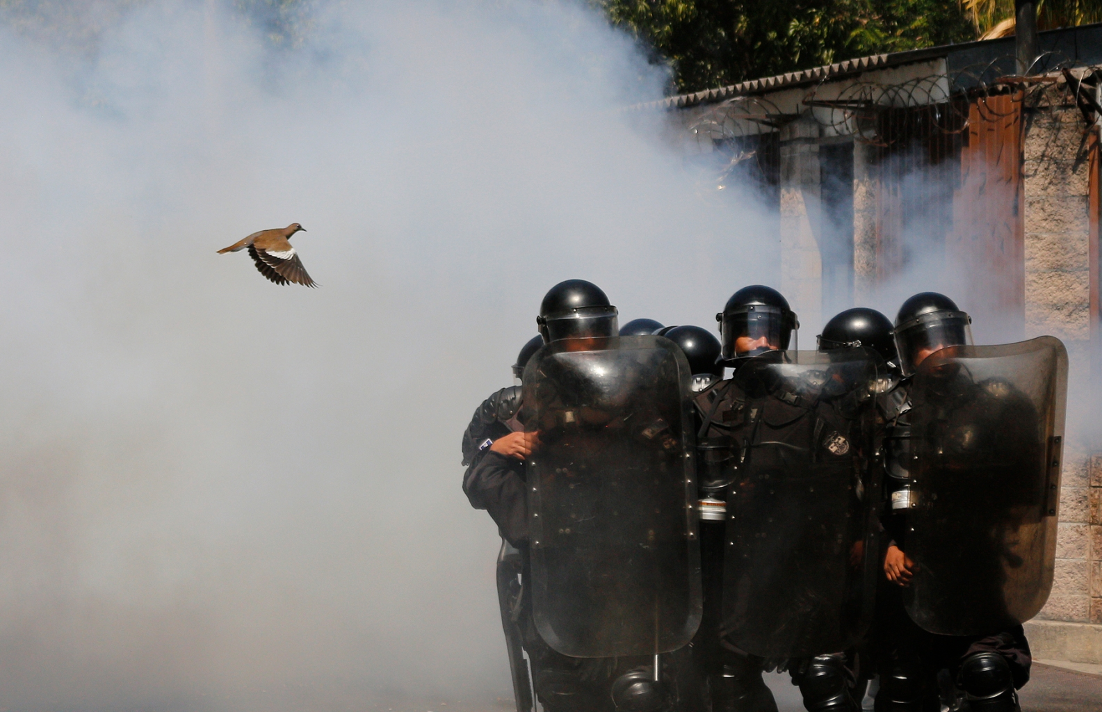 A bird flies near riot police during a protest against the intention of the El Salvador National Congress to put the water service in the hands of the private sector in San Salvador on March 20. Alex Peña/Getty Images