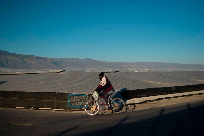 A migrant rides a bike past greenhouses in El Ejido, Spain, on Jan. 14.