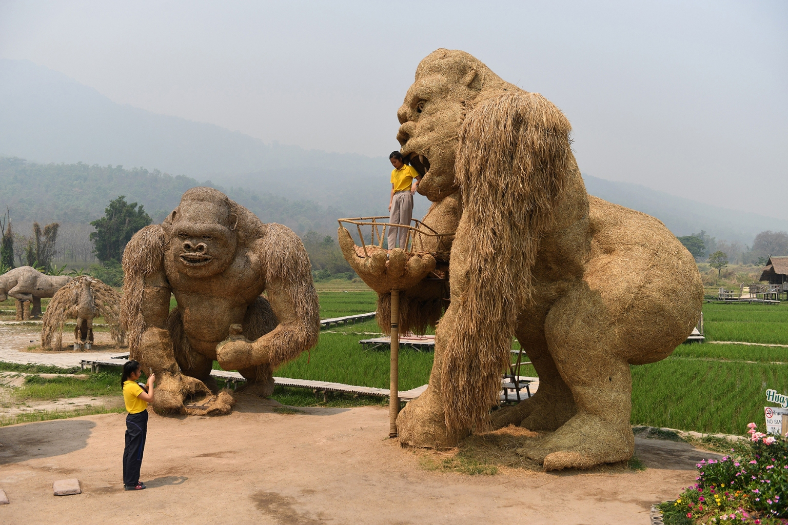 A student has her picture taken with a King Kong sculpture made of straw in the northern Thai province of Chiang Mai on April 3. LILLIAN SUWANRUMPHA/AFP/Getty Images