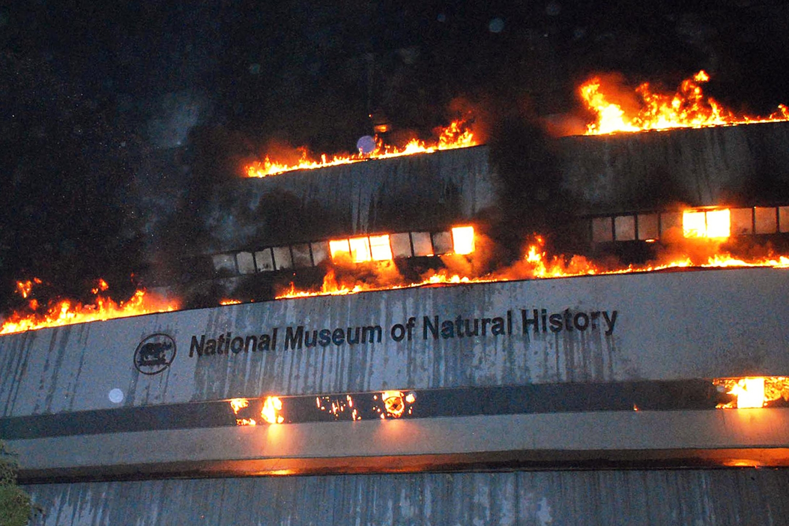 India's National Museum of Natural History is destroyed by a fire in New Delhi on April 26, 2016. (Arvind Yadav/Hindustan Times via Getty Images)