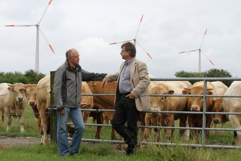 A cattle farmer and director of the local wind farm talks with a regional historian on Aug. 8, 2013, on Pellworm Island, northern Germany, where a shift toward a zero-carbon future has been driven by locals, not energy companies.