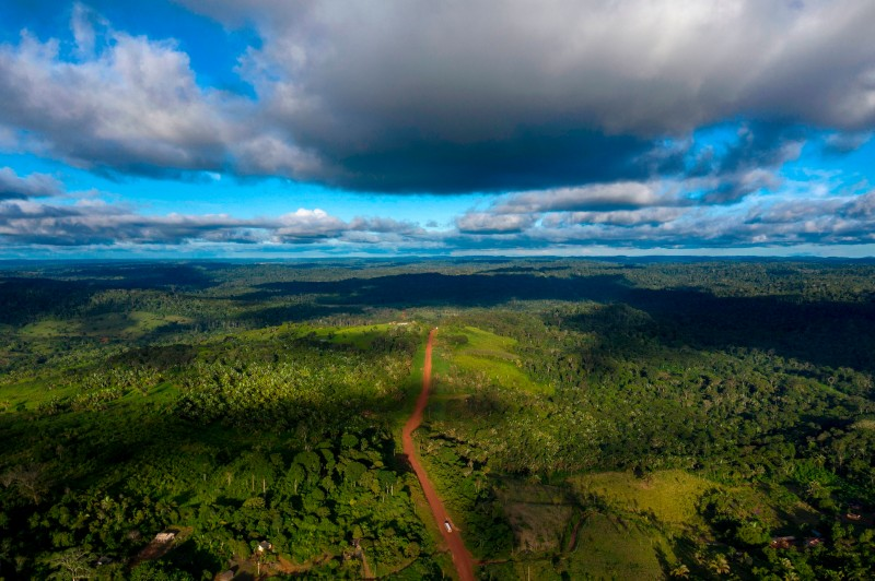 Aerial view of the Transamazonica Road (BR-230) near Medicilandia, Para State, Brazil on March 13, 2019.