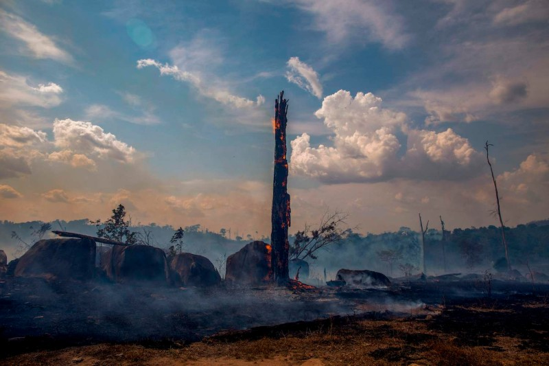 View of a burnt area of forest in Altamira, Pará state, Brazil, on Aug. 27.