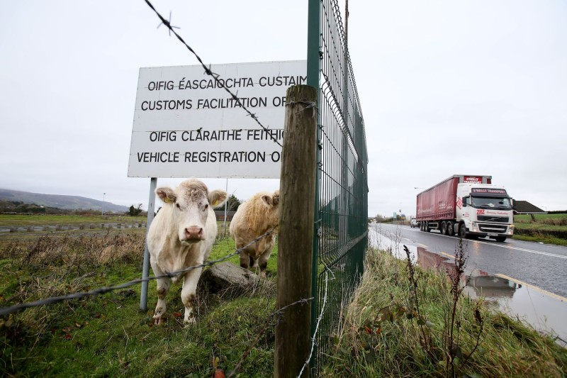 Cows stand under a sign for a disused Irish border vehicle registration and customs office outside Dundalk, Ireland on Nov. 14, 2018 near the Northern Irish border.