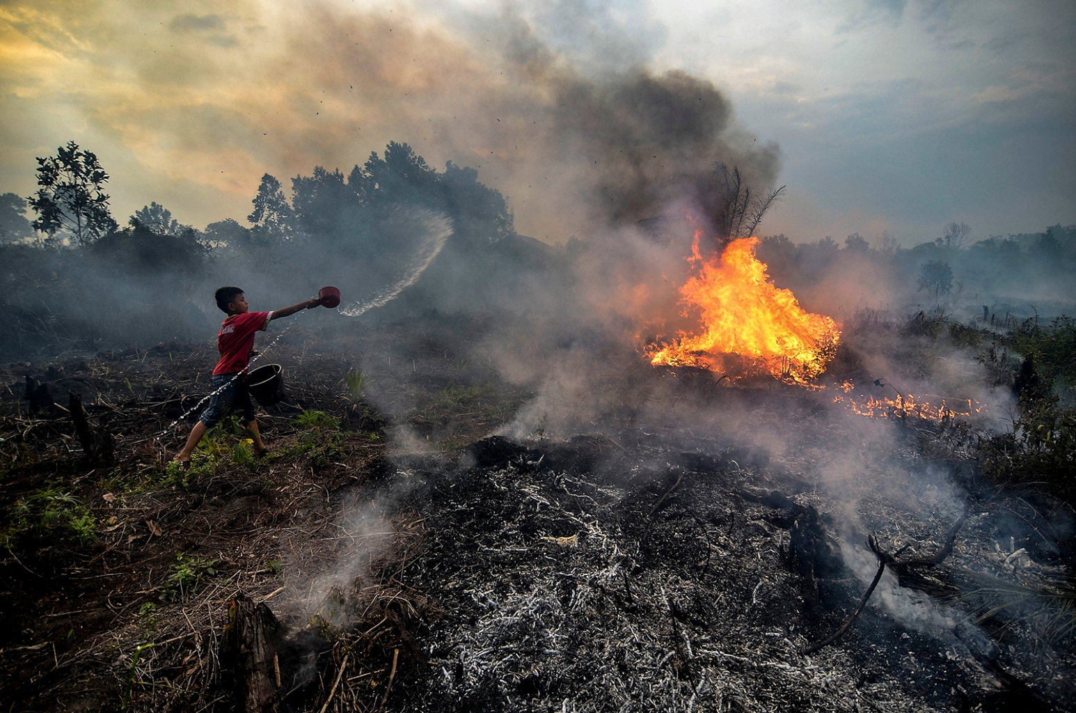 A young boy try to extinguish a fire at a peatland area near their neighbourhood in Pekanbaru, Riau province, Indonesia, on Oct. 4. WAHYUDI/AFP via Getty Images
