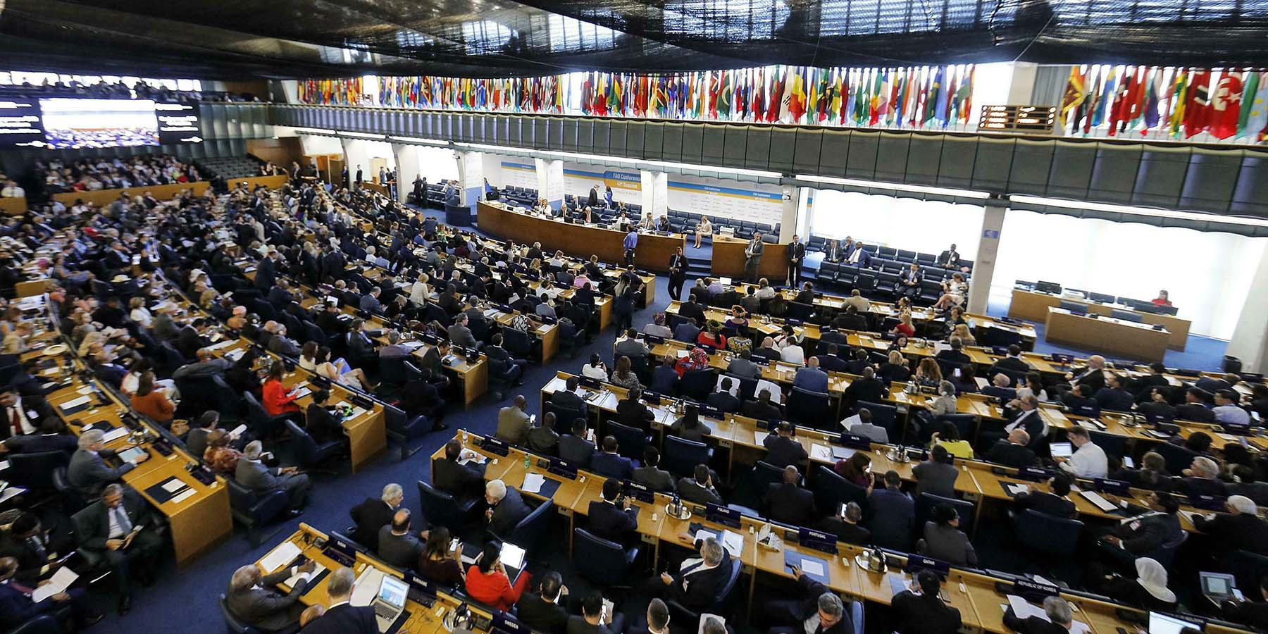 Delegates sit at the FAO headquarters during the vote for diretor general of the U.N. organization in Rome on June 23.