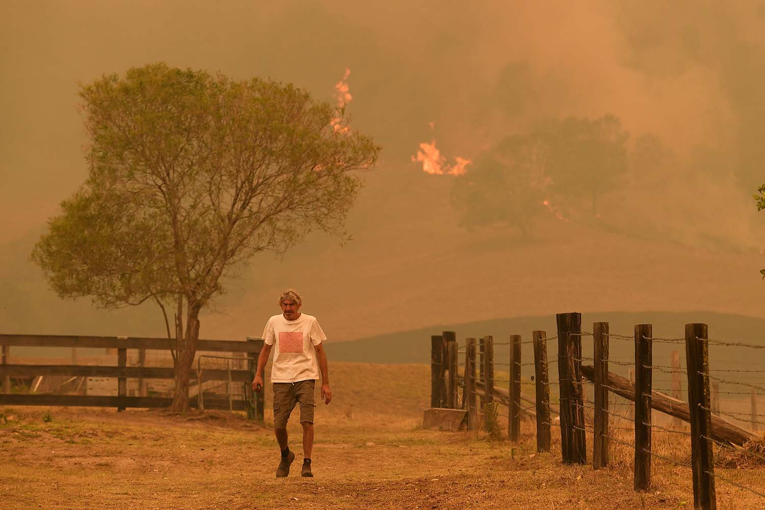 An Australian walks on a farm as flames from devastating bush fires approach near the town of Taree, north of Sydney, on Nov. 14. WILLIAM WEST/AFP via Getty Images