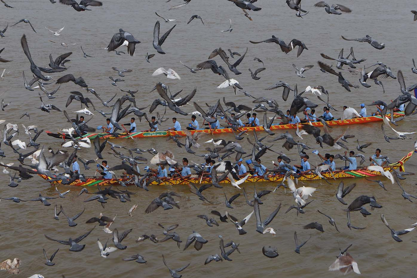 Cambodian participants row their dragon boats as pigeons fly past during the Water Festival on the Tonle Sap river in Phnom Penh on Nov. 10. TANG CHHIN SOTHY/AFP via Getty Images