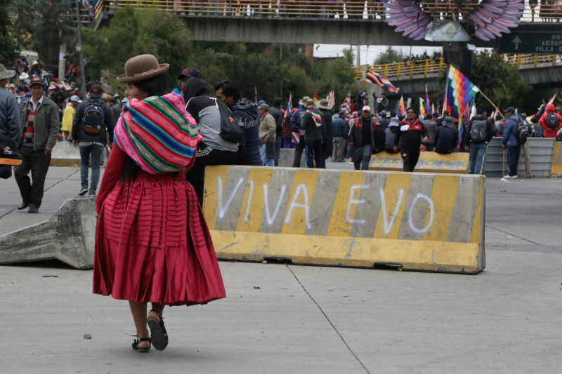 A supporter of former Bolivian President Evo Morales