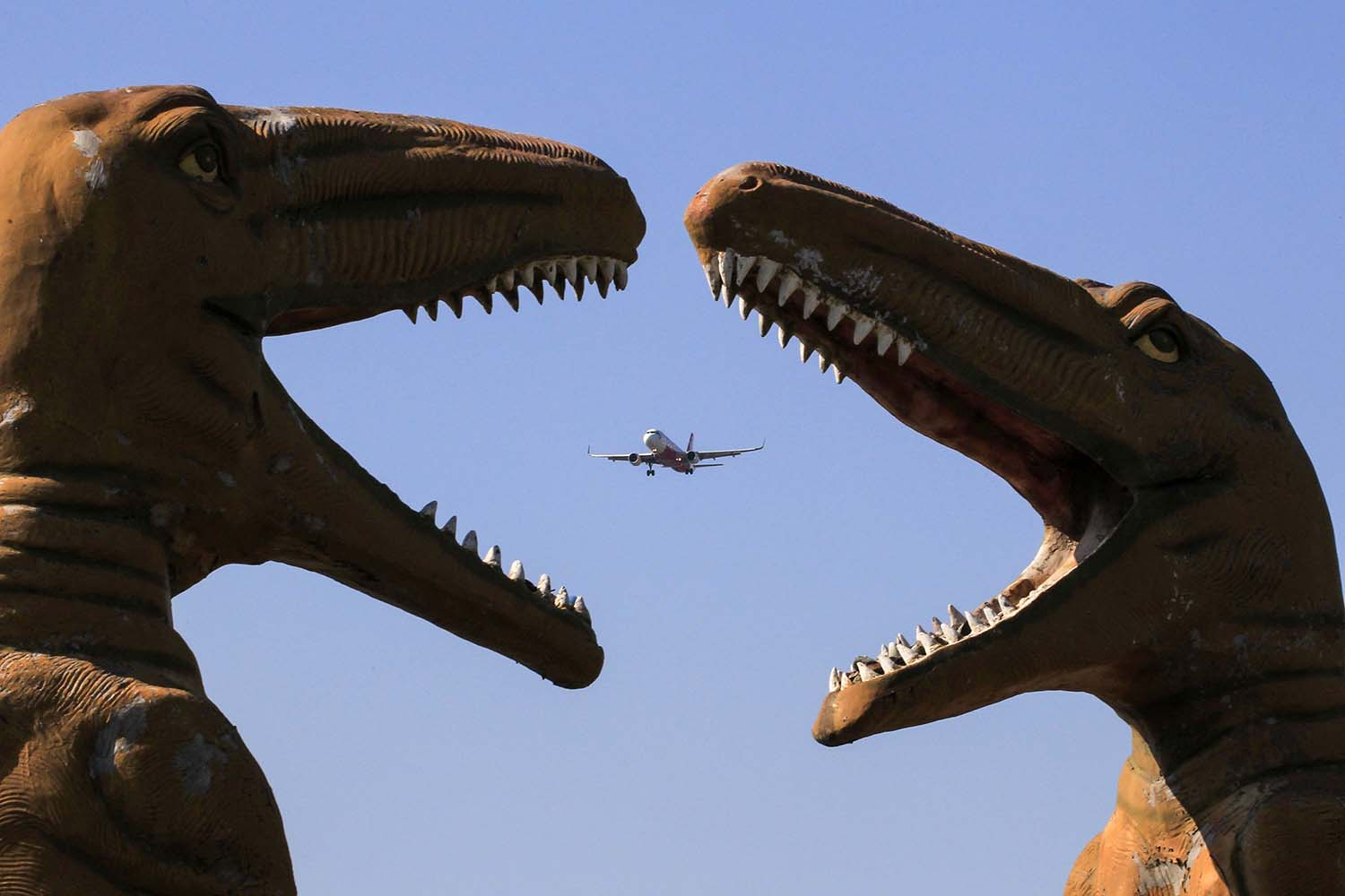 A plane flies past sculptures of dinosaurs at the Valley of Animals park in Chandigarh, India, on Nov. 9. VIJAY MATHUR/AFP via Getty Images