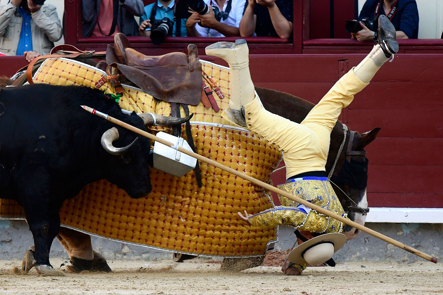 A picador falls from his horse during a bullfight during the San Isidro festival in Madrid on May 15. GABRIEL BOUYS/AFP/Getty Images