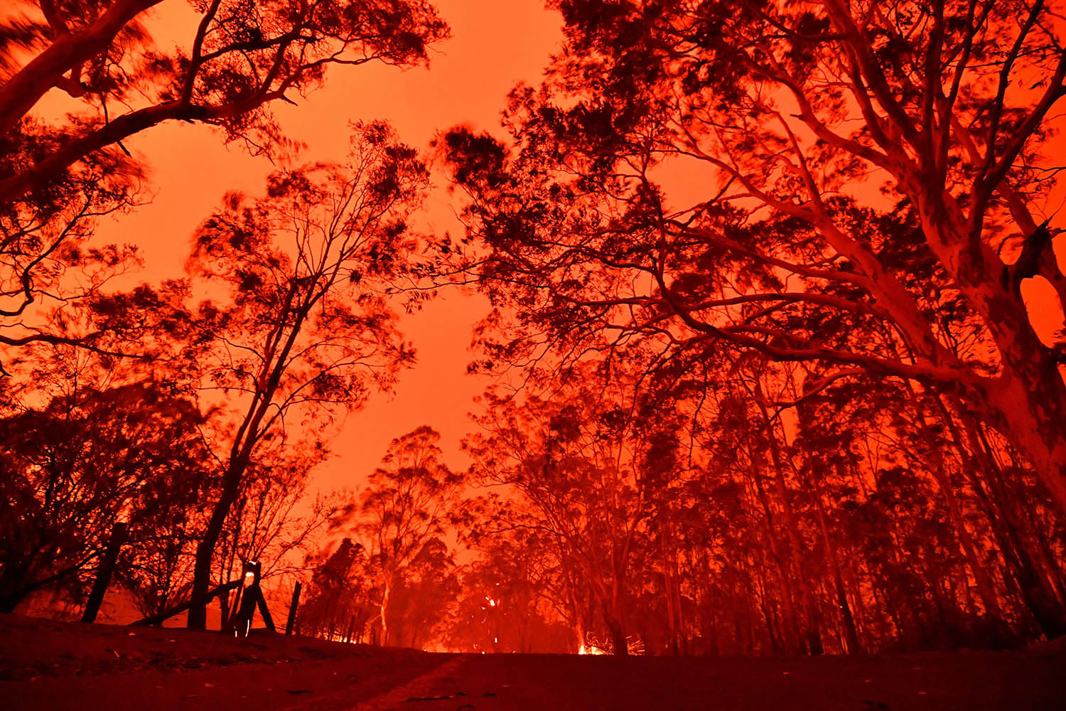 The afternoon sky glows red from bushfires near the town of Nowra on Dec. 31. Thousands of tourists and locals were forced to flee to beaches in fire-ravaged southeast Australia just before the new year as blazes ripped through popular tourist areas leaving no escape by land. SAEED KHAN/AFP via Getty Images