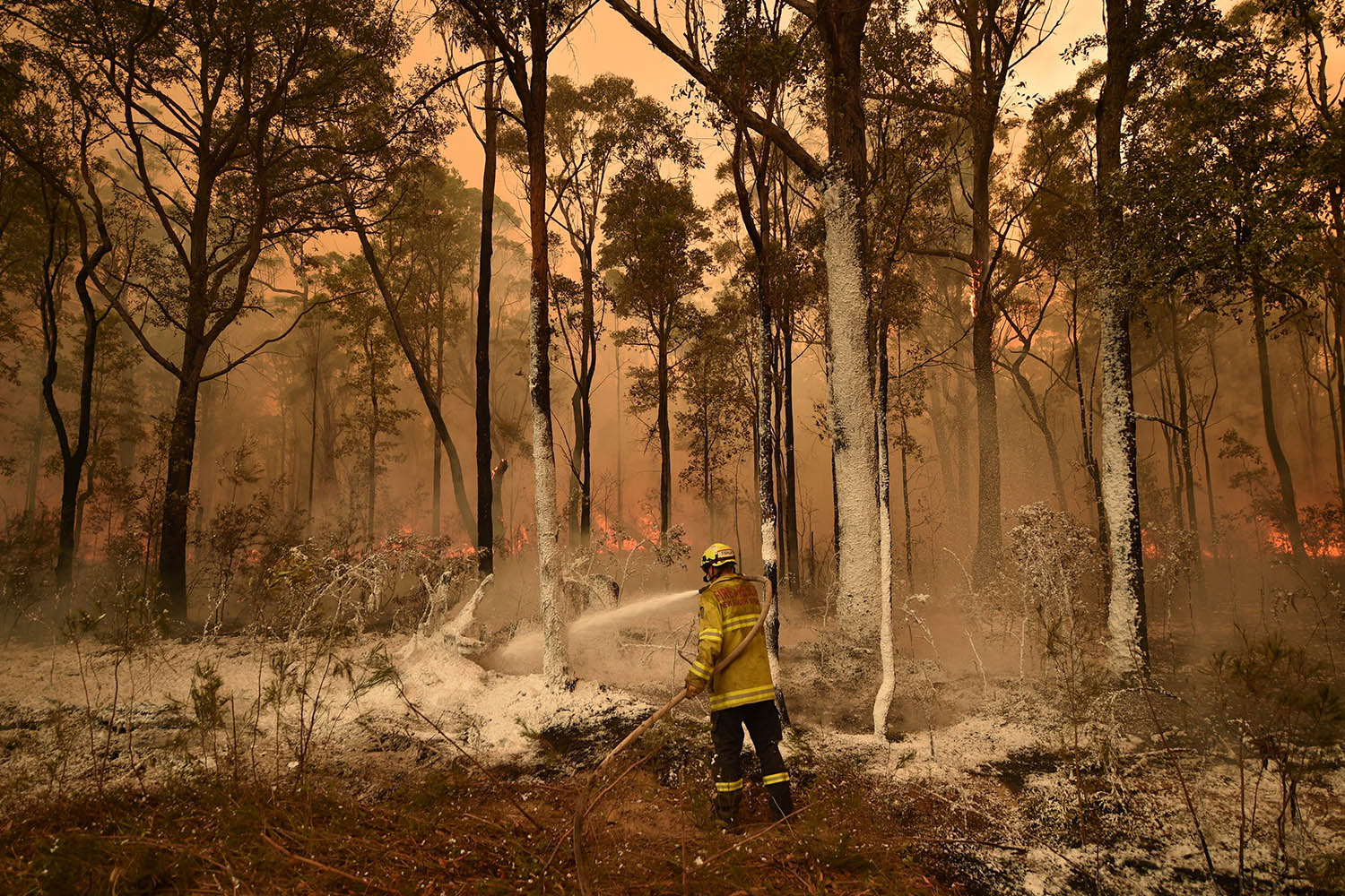 A firefighter sprays foam retardant on a back burn ahead of a fire front in the New South Wales town of Jerrawangala on Jan. 1. PETER PARKS/AFP via Getty Images