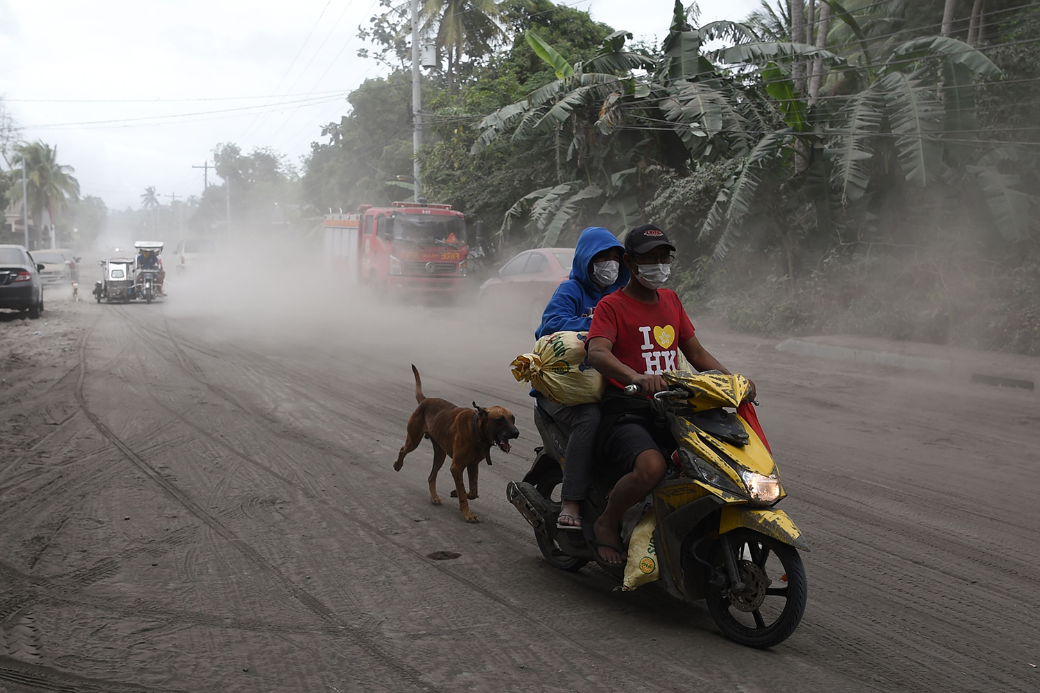 A dog trails its owners along a volcanic ash-covered road in Agoncillo town, Batangas province south of Manila in the Philippines on Jan. 15. TED ALJIBE/AFP via Getty Images