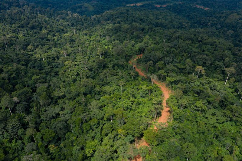 A road snakes through the Atewa forest in Ghana on Sept. 5, 2019. The road was built by the Ghanaian government to allow researchers to sample soil ahead of the start of mining operations.