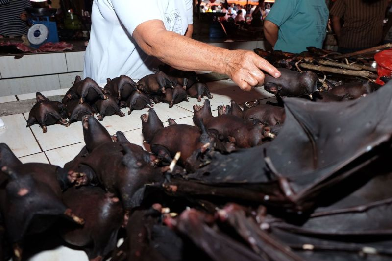 A vendor sells bats at the Tomohon meat market in Sulawesi, Indonesia, on Feb. 8.