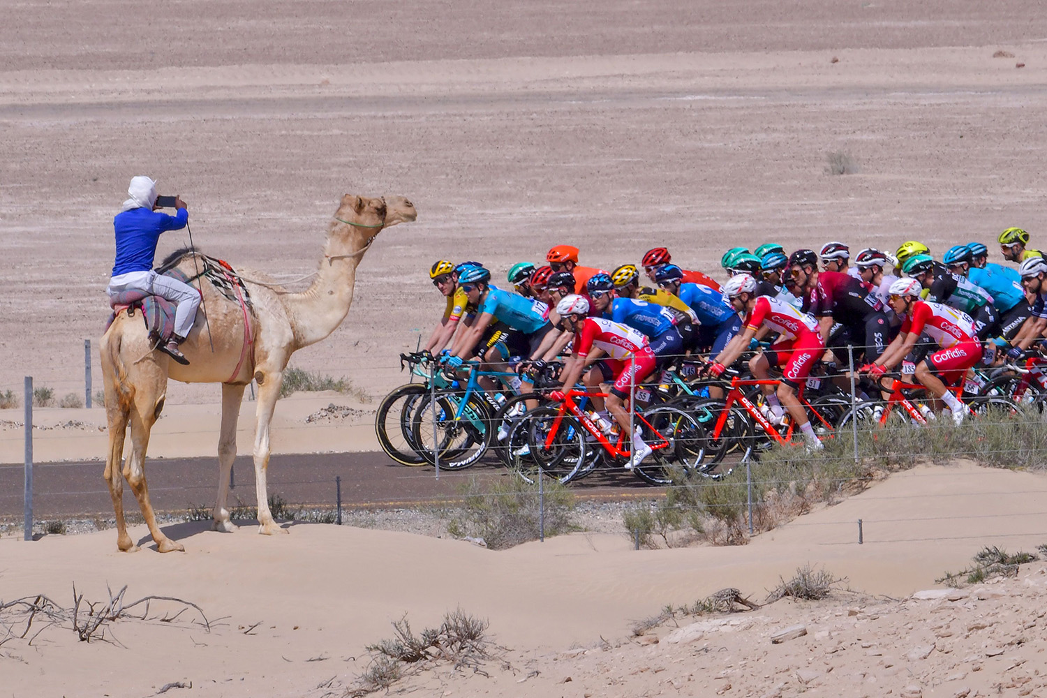The pack rides during the third stage of the UAE Cycling Tour from al-Maroom to Jebel Hafeet on Feb. 24. GIUSEPPE CACACE/AFP via Getty Images