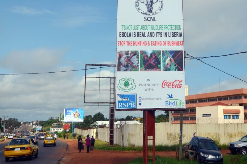 A picture taken on Aug. 19, 2014 in Monrovia, Liberia shows an Ebola information billboard.