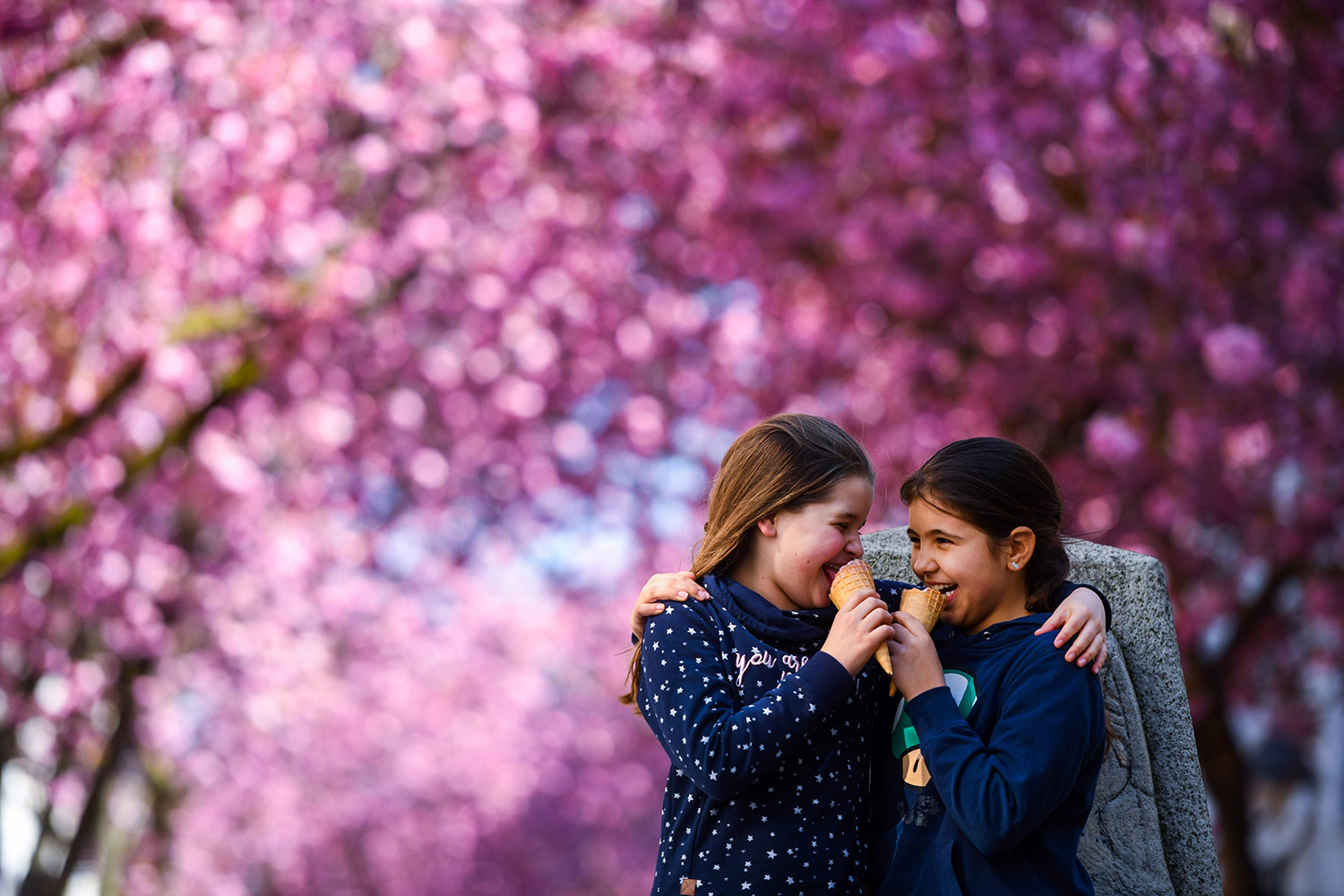 Two girls eat ice cream under the blooming cherry trees in Bonn, western Germany, on April 5. INA FASSBENDER/AFP via Getty Images