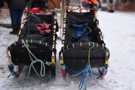Two mushing sleds are set beside a mushing trailer ahead of the race.