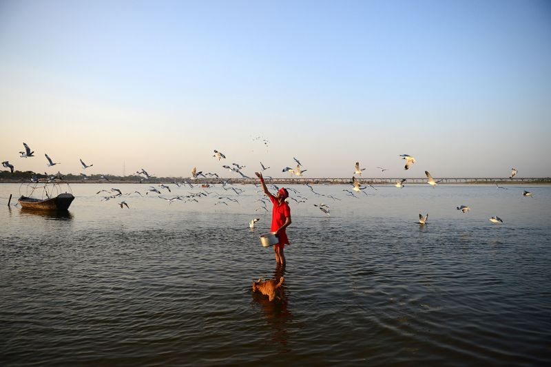 A man feeds sea gulls at Arail Ghat in Allahabad, India, on April 7. SANJAY KANOJIA/AFP via Getty Images