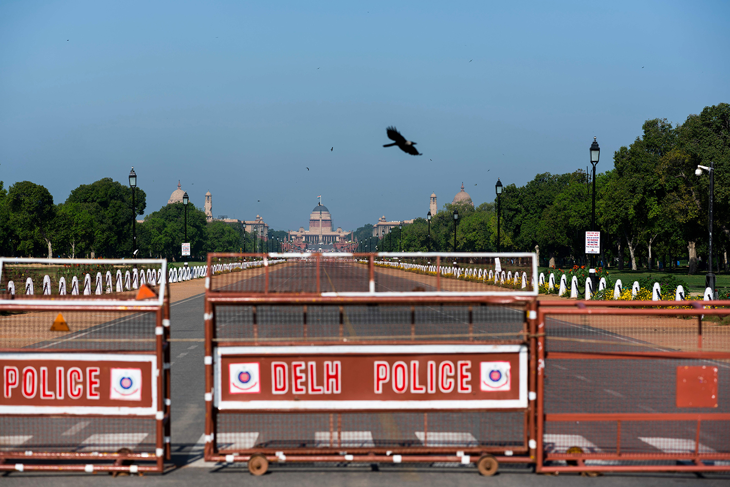A crow flies over a deserted street near the presidential palace in New Delhi on April 2.