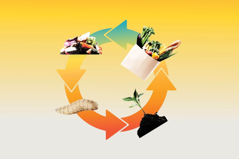 food-waste-climate-change-cif-podcast-article