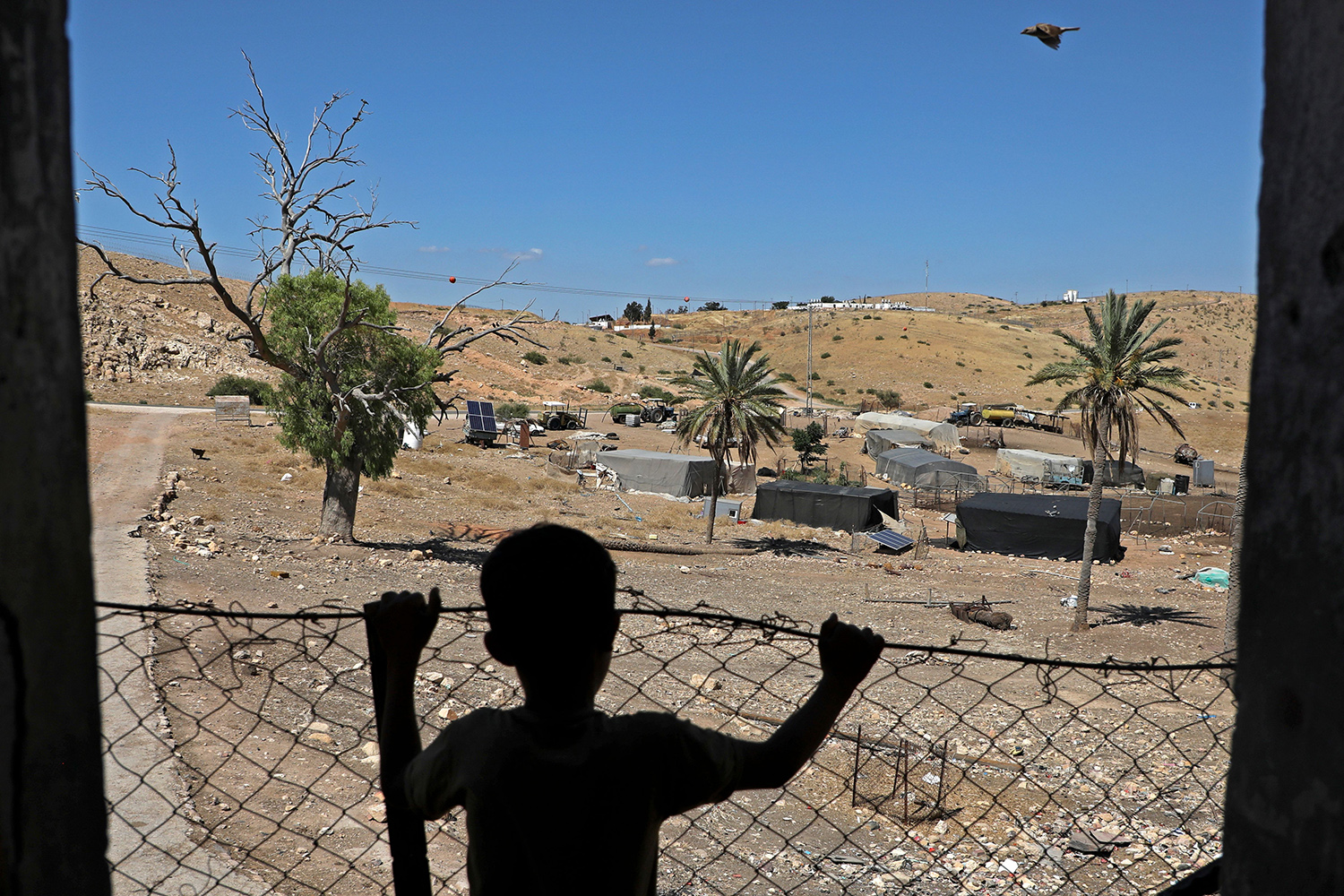 A Palestinian child stands at his family land east of Tubas in the Jordan Valley on June 15. JAAFAR ASHTIYEH/AFP via Getty Images