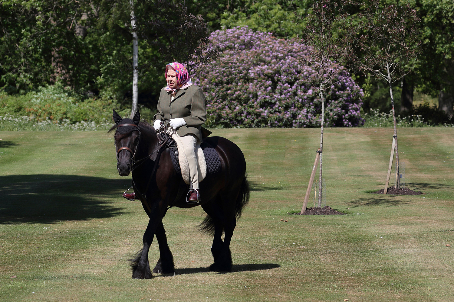 Britain's Queen Elizabeth II rides Balmoral Fern, a 14-year-old Fell Pony, in Windsor Home Park, west of London, over the weekend of May 30-31. According to The Telegraph, it was the first time the queen had been seen since the pandemic lockdown. STEVE PARSONS/POOL/AFP via Getty Images