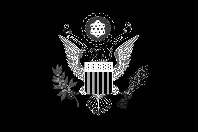 diversity-state-department-black-lives-matter-diplomacy-illustration-