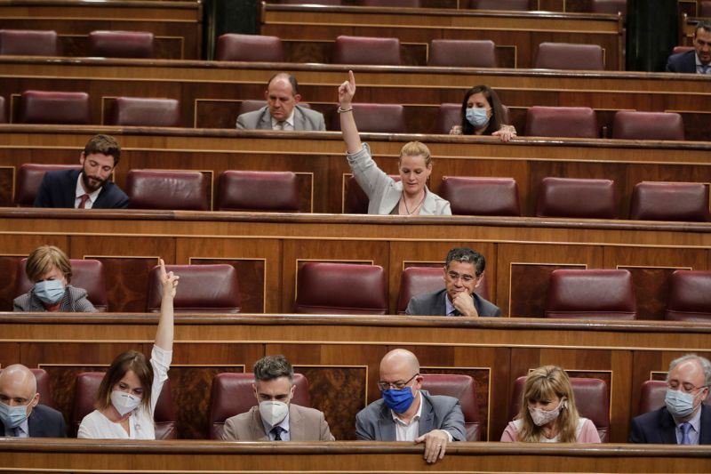 "Spanish deputies take part in a plenary session to discuss the ""minimum vital income"" plan approved by the government in Madrid on June 10."