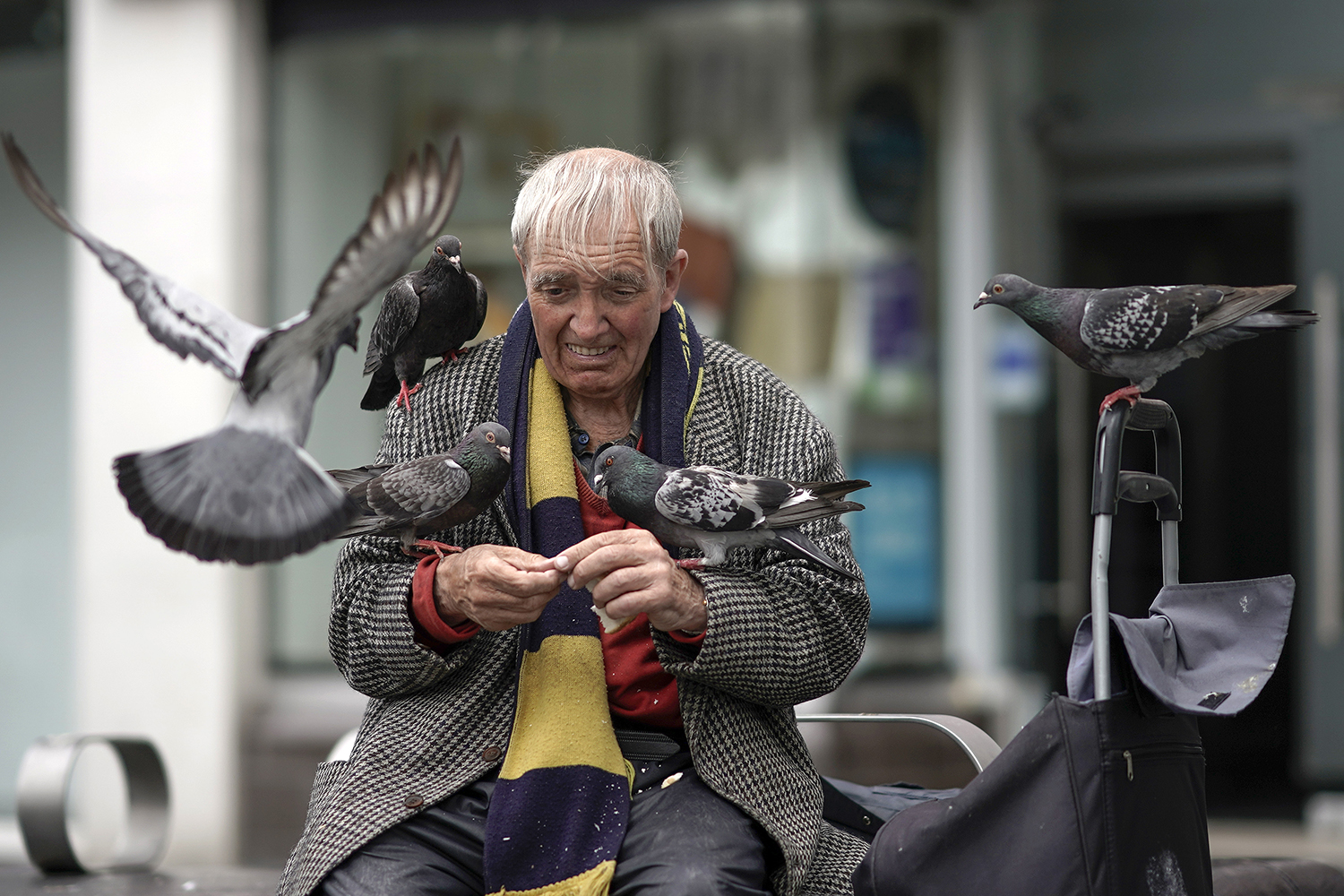 A man feeds pigeons in St John's shopping center in Liverpool, England, on July 15. Christopher Furlong/Getty Images