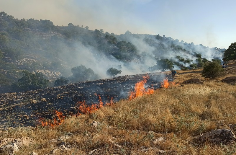 A picture obtained by AFP from the Iranian news agency Tasnim on May 30 shows fires burning in a protected area in the Zagros mountain range, near the city of Behbahan, Iran.