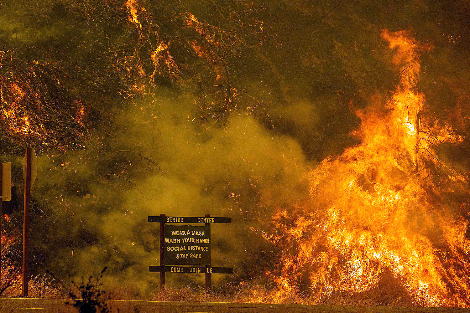A sign warning people about COVID-19 is surrounded by flames during a fire near Lake Berryessa in Napa, California, on Aug. 18. JOSH EDELSON/AFP via Getty Images