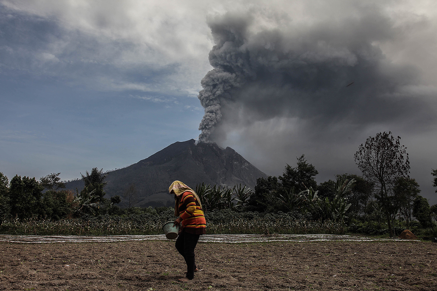 A farmer works in a field as Mount Sinabung spews thick ash into the air in Karo, North Sumatra, Indonesia, on Aug. 18. IVAN DAMANIK/AFP via Getty Images