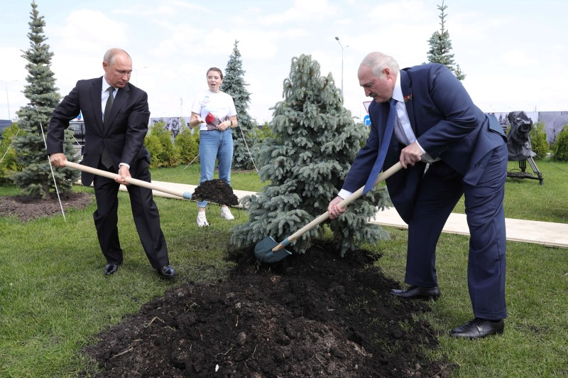 Russian President Vladimir Putin and his Belarusian counterpart Aleksandr Lukashenko plant a tree during a ceremony unveiling the Soviet Soldier Memorial near Rzhev, Russia on June 30, 2020.