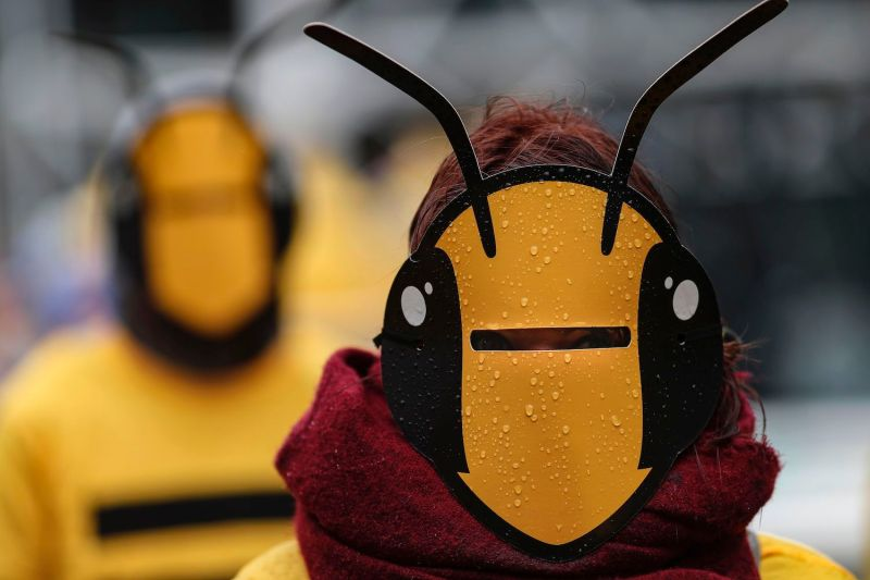 A demonstrator wears a bee mask during a demonstration for biodiversity called by the World Wide Fund for Nature in Paris on May 4, 2019.