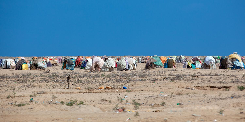 Huts sheltering refugees in Lughaya, Somaliland, on Nov. 21, 2011.