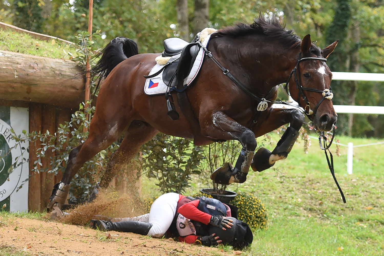 A horse jumps to avoid thrown Czech rider Gabriela Slavikova during Mondial du Lion, a world championship horse-riding competition in Le Lion-d'Angers, western France, on Oct. 17. JEAN-FRANCOIS MONIER/AFP via Getty Images