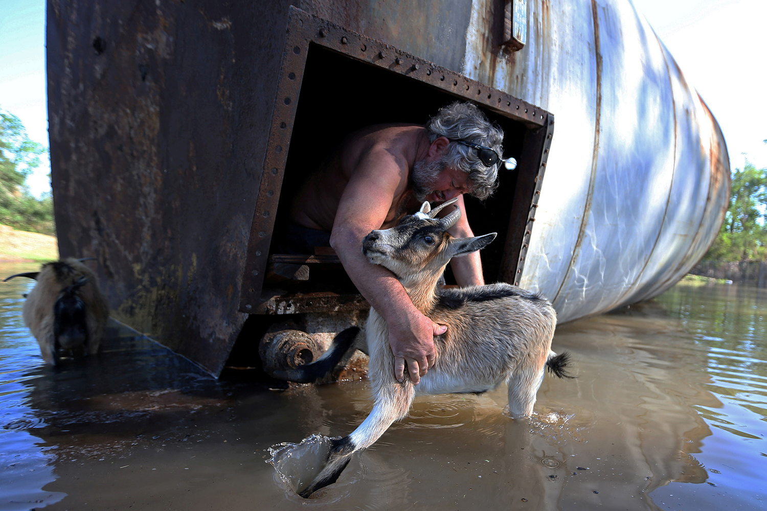 Brian Schexnayder rescues his goat from a damaged silo on his farm after Hurricane Delta swept through Iowa, Louisiana, on Oct. 10.  Jonathan Bachman/REUTERS
