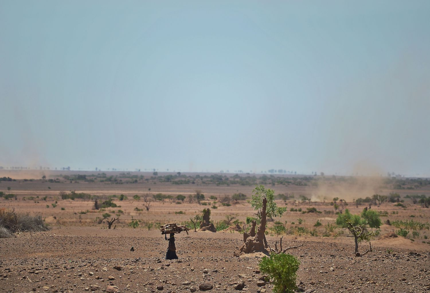 foreignpolicy.com - Lauren Evans - In Northern Kenya, the Climate Crisis Shifts Gender Roles