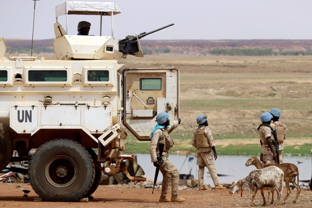 Peacekeeping Missions and a Marshall Plan Won't Save Mali