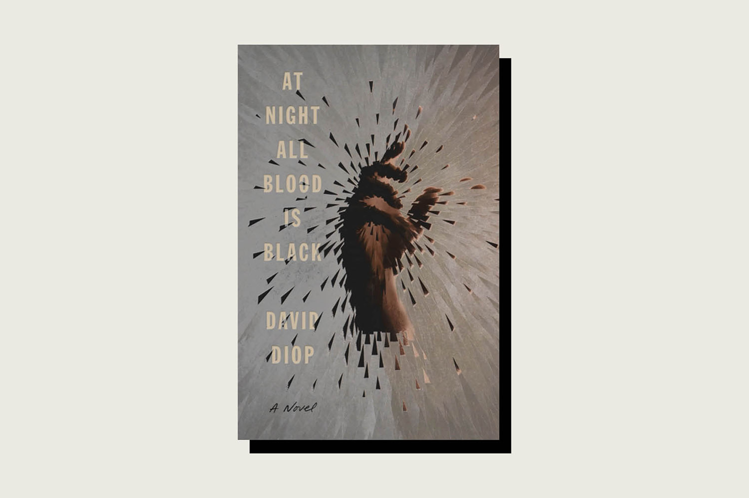 At Night All Blood Is Black, David Diop, Farrar, Straus and Giroux, 160 pp., , November 2020 (Translated from French by Anna Moschovakis)