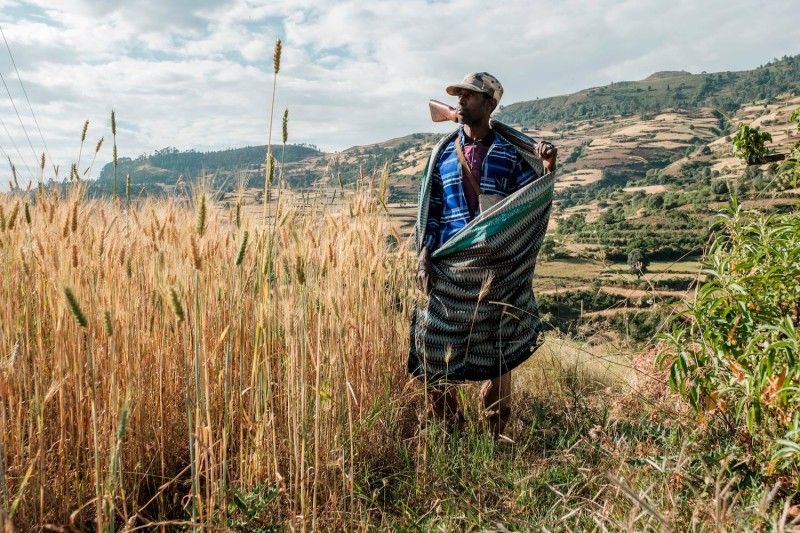 Zeleke Alabachew, a farmer and militia fighter, poses near the village of Tekeldengy, northwest of Gondar, Ethiopia, on Nov. 8.