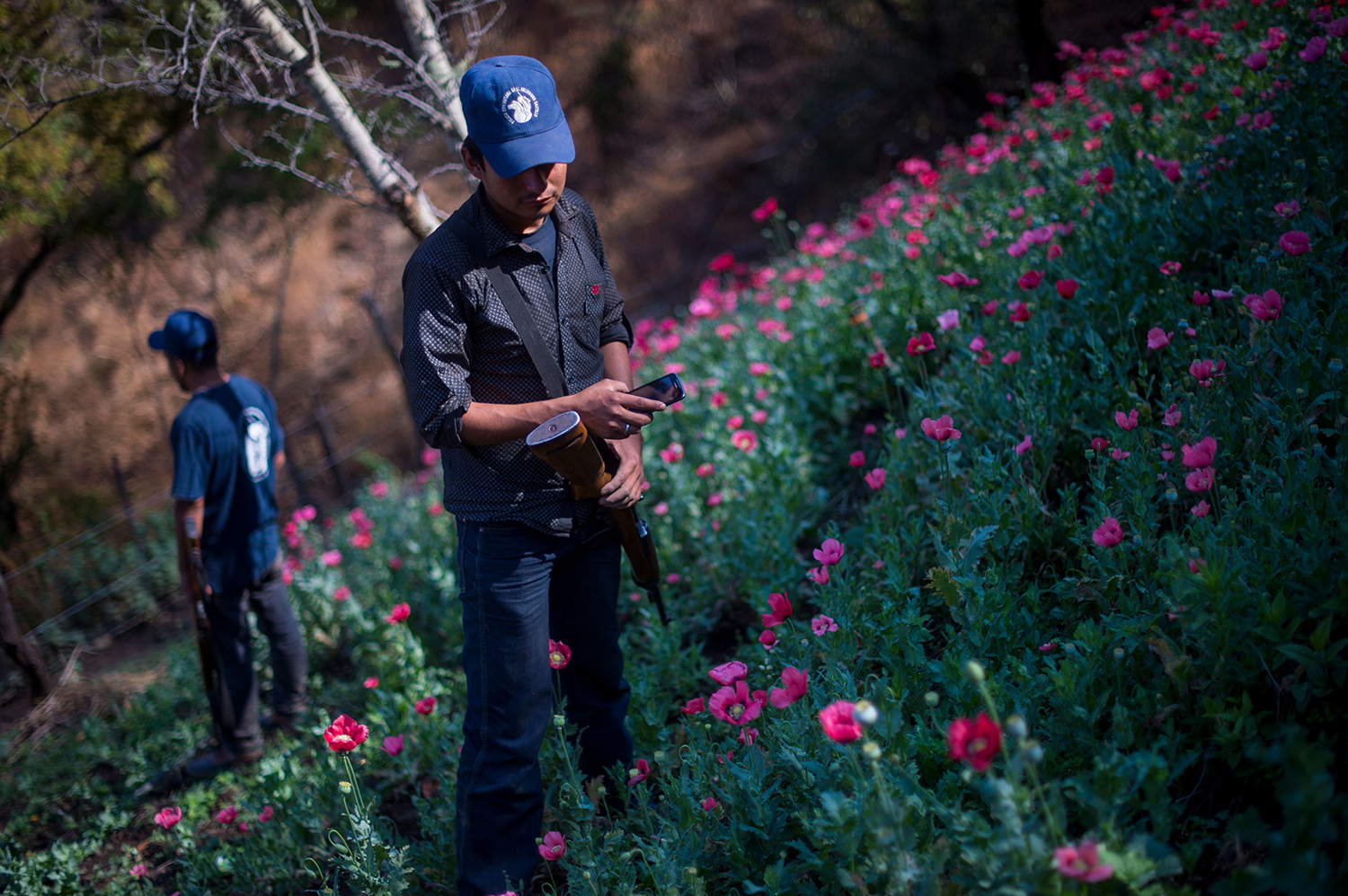 Members of the Guerrero Community Police patrol an illegal poppy field in Guerrero state on March 25, 2018.